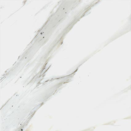 Cafe-Forest-Marble